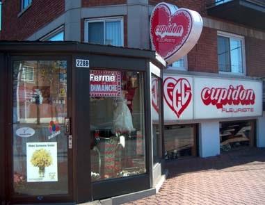 Cupidon Fleuriste livraison fleur Montreal pres Hopital Fleury