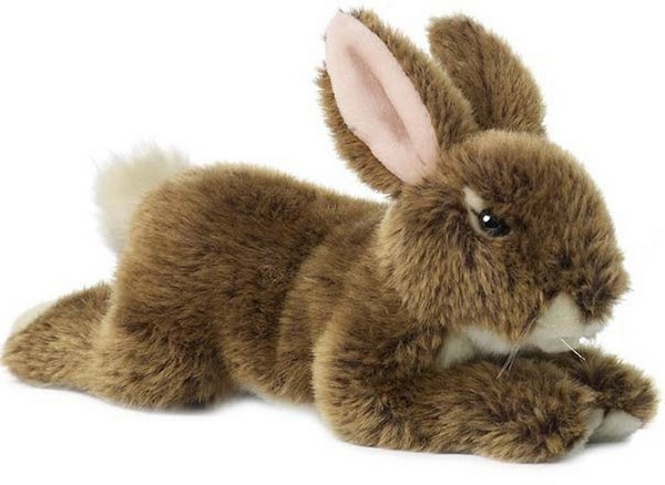 Rabbit plush delivery chocolate and flowers Cupidon Florist